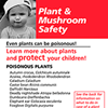 Plant card. Handy reference list of toxic and nontoxic plants.