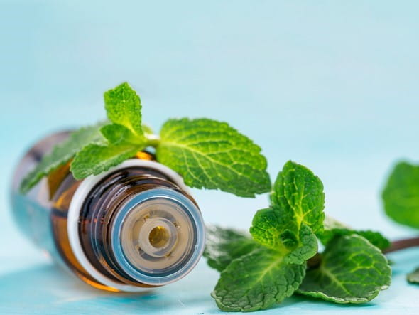 Can Menthol Have Harmful Effects?