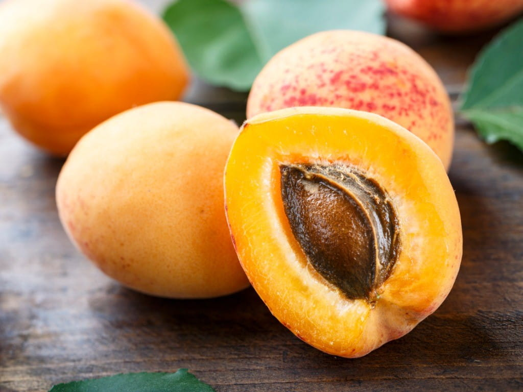 stone fruit ripe apricots cut to show kernel